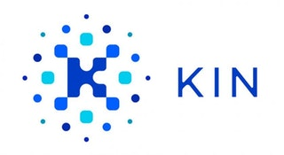 What is Kin?