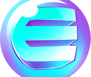 What is Enjin Coin?